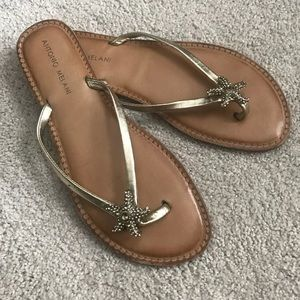 67b0ee3509c43e ANTONIO MELANI Shoes - Antonio Melani starfish sandals